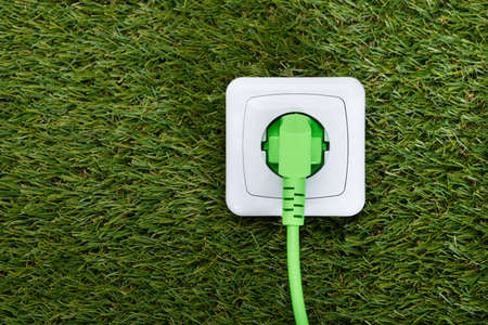 plug in: Closeup of green plug in outlet on grass