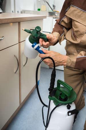protecci�n: Primer De Control de Plagas trabajador mano que sostiene pulverizador para rociar pesticidas en gabinete Foto de archivo