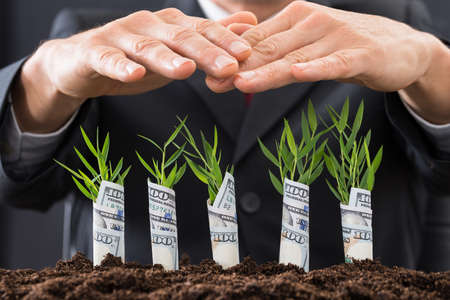 growing money: Close-up Of Businessman Protecting Sapling Covered With American Dollars