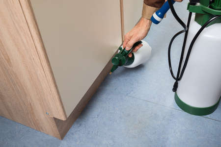 Close-up Of Pest Control Worker Hand Holding Sprayer For Spraying Pesticides On Cabinet