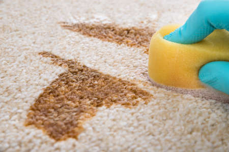 Close-up Of Person's Hand Cleaning Stain On Carpet With Sponge