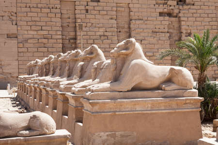 ancient egyptian civilization: Ram-headed Sphinxes Statue In Karnak Temple, Luxor, Egypt Stock Photo