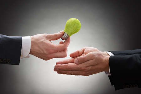 bioenergy: Close-up Of Businessman Hand Giving Eco Light Bulb To Other Businessperson