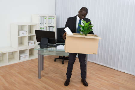 transferred: Portrait Of Young African Businessman Holding Folder And Plant In Cardboard Box In Office