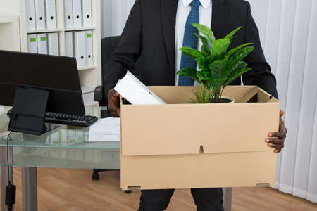 Close-up Of Businessman Holding Folder And Plant In Cardboard Box At Office