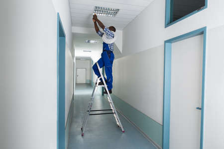 ceiling: Young Male Electrician On Stepladder Installing Light On Ceiling