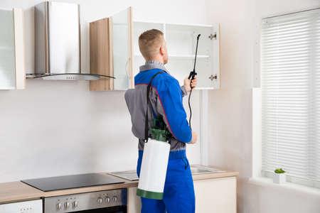 ouvrier: Jeune travailleur de vaporiser un insecticide Sur l'�tag�re de la salle de cuisine Banque d'images