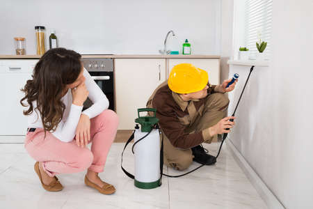 Young Woman Looking At Worker Spraying Insecticide Under The Windowsill In Kitchen