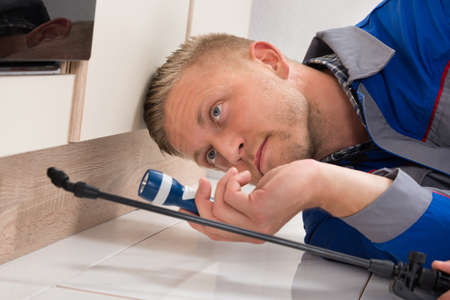 exterminating: Worker With Flashlight Lying Down On Floor And Spraying Insecticide Stock Photo