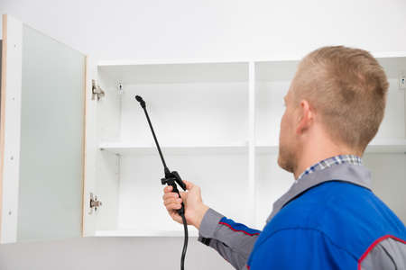 exterminating: Young Worker Spraying Insecticide On Shelf Of Kitchen Room Stock Photo