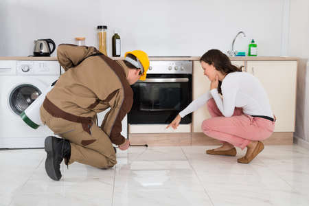 Male Worker Spraying Insecticide In Front Of Housewife In Kitchen