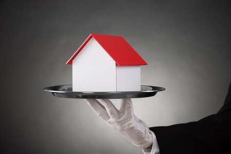 hospitality staff: Close-up Of Butler With House Model On Stainless Steel Tray
