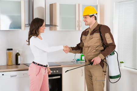 pesticides: Happy Woman And Young Pest Control Worker Shaking Hands To Each Other In Kitchen Room Stock Photo