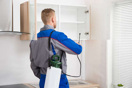 pest control: Young Worker Spraying Insecticide On Shelf Of Kitchen Room Stock Photo