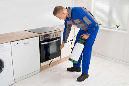 exterminating: Young Man In Workwear Spraying Pesticide In Kitchen Room
