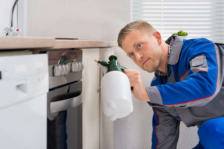 exterminating: Young Worker Spraying Pesticide On Cabinet With Sprayer Stock Photo