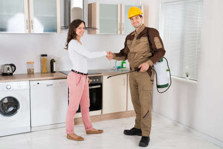 Happy Woman And Young Pest Control Worker Shaking Hands To Each Other In Kitchen Room Archivio Fotografico