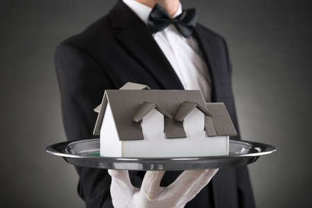 butler: Close-up Of Butler With House Model On Stainless Steel Tray