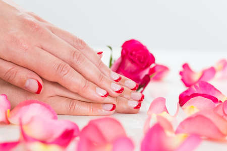 nailart: Close-up Of Beautiful Manicured Woman Hands With Roses