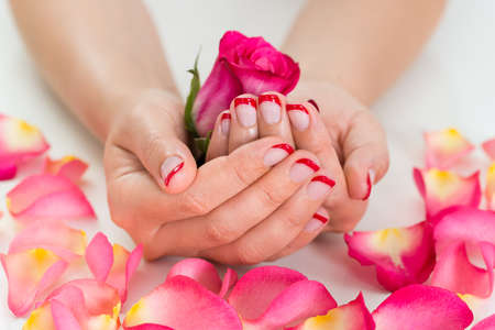 nailart: Close-up Of Woman Hands With Red Nail Varnish Holding Rose