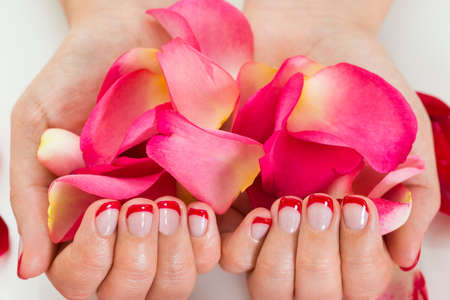nailart: Close-up Of Female Hands With Manicure Nail Varnish Holding Rose Petals