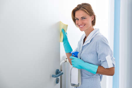 maid: Young Happy Maid Cleaning Door With Dispenser Bottle And Rag