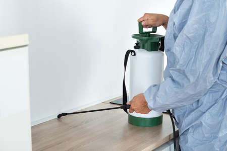exterminator: Midsection of exterminator spraying pesticide on kitchen counter Stock Photo