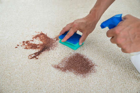 stain: Cropped image of man cleaning stain on carpet with sponge