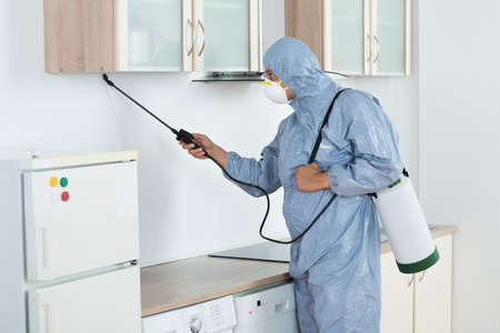 pest control: Side view of exterminator in workwear spraying pesticide in kitchen. Pest control