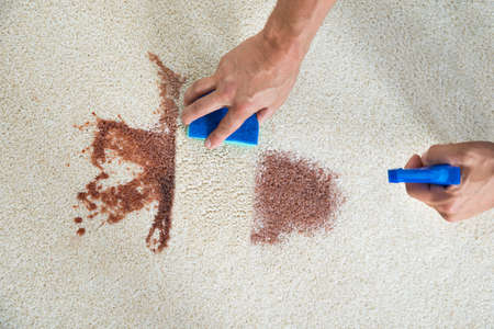 carpet stain: Cropped image of man cleaning stain on carpet with sponge