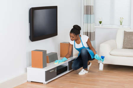 Young African Woman Cleaning Furniture In Living Room