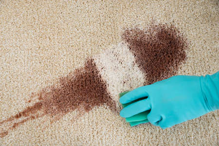 clean carpet: High angle view of hand cleaning red wine fallen on rug at home