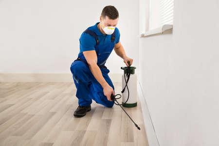 Travailleur mi adulte mâle pulvérisation de pesticides sur le mur à la maison Banque d'images - 50245789