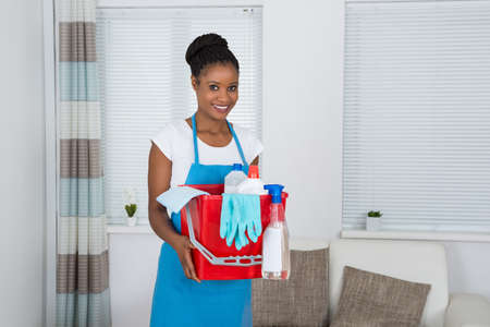 orden y limpieza: Smiling African Woman Holding Basket With Cleaning Equipment Foto de archivo