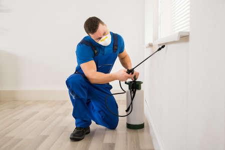 Trabajador de sexo masculino pulverización de pesticidas en ventana de la esquina en casa Foto de archivo