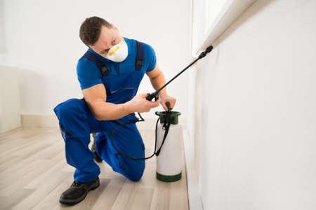 Homme travailleur de pulvérisation de pesticides sur la fenêtre de coin à la maison Banque d'images - 51090340