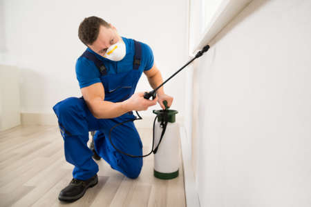 exterminating: Male worker spraying pesticide on window corner at home Stock Photo