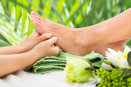 masseuse: Cropped image of masseuse massaging womans foot against leaves at beauty spa