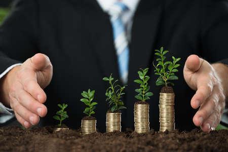 Close-up Von Wirtschaftler Hand schützen Kleine Anlage auf gestapelten Münzen Standard-Bild - 52807234