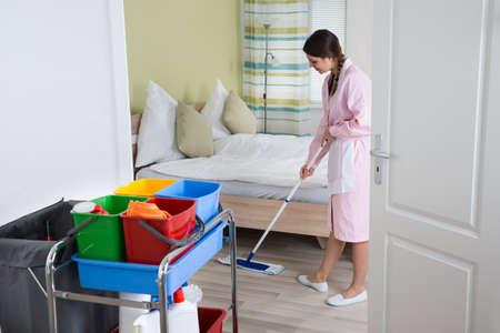 ama de llaves: Mujer feliz ama de casa Mopping Suelo En La Habitaci�n