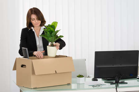 belongings: Young Businesswoman Packing Her Belongings In Cardboard Box On Desk