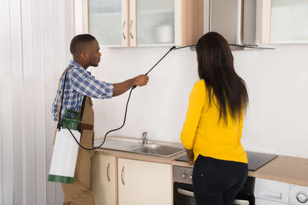 insecticide: Male Worker Spraying Insecticide In Front Of Woman In Kitchen Stock Photo
