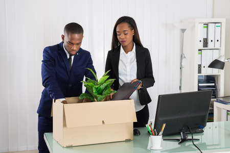 dejected: Two African American Business People Packing Folders In Cardboard Box At Workplace