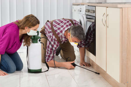 insecticide: Mature Woman Looking At Male Worker Spraying Insecticide In Kitchen Stock Photo
