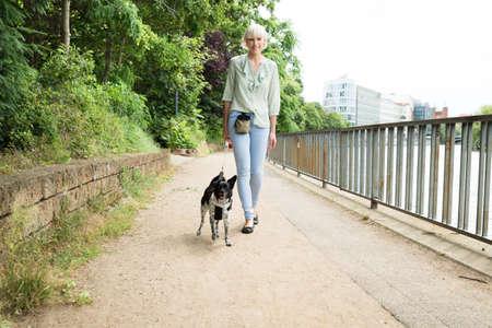 Jonge gelukkige vrouw lopen met haar hond op betonnen loopbrug