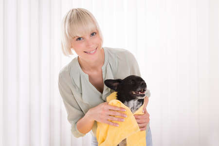 house trained: Young Happy Woman Wiping Her Dog With Towel Stock Photo