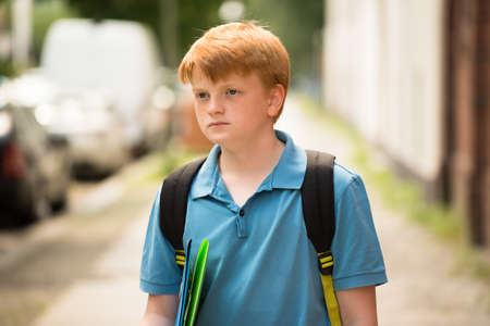 contemplated: Portrait Of A Contemplated Schoolboy With Folder On A Way To School Stock Photo