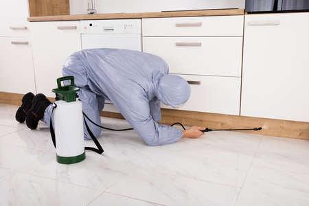 Exterminator In Workwear Spraying Pesticide With Sprayer Stock Photo