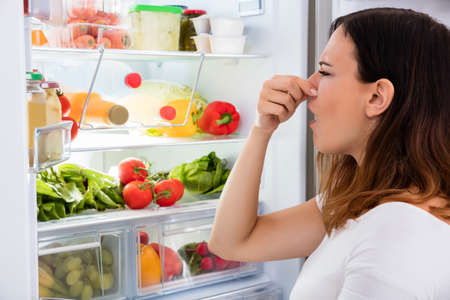 냉장고에서 나오는 젊은 여자 드러내 냄새