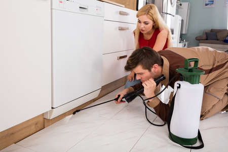 Woman Looking At Exterminator Worker Spraying Insecticide Chemical For Termite Pest Control In House Kitchen Stock Photo